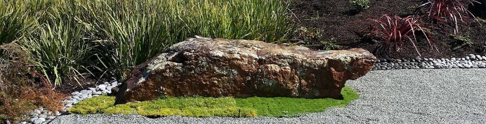 Mill Valley Garden Design & Landscape Designer By Mystical Landscapes