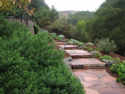 Red Moss Back Flagstone - San Rafael Landscape Architect