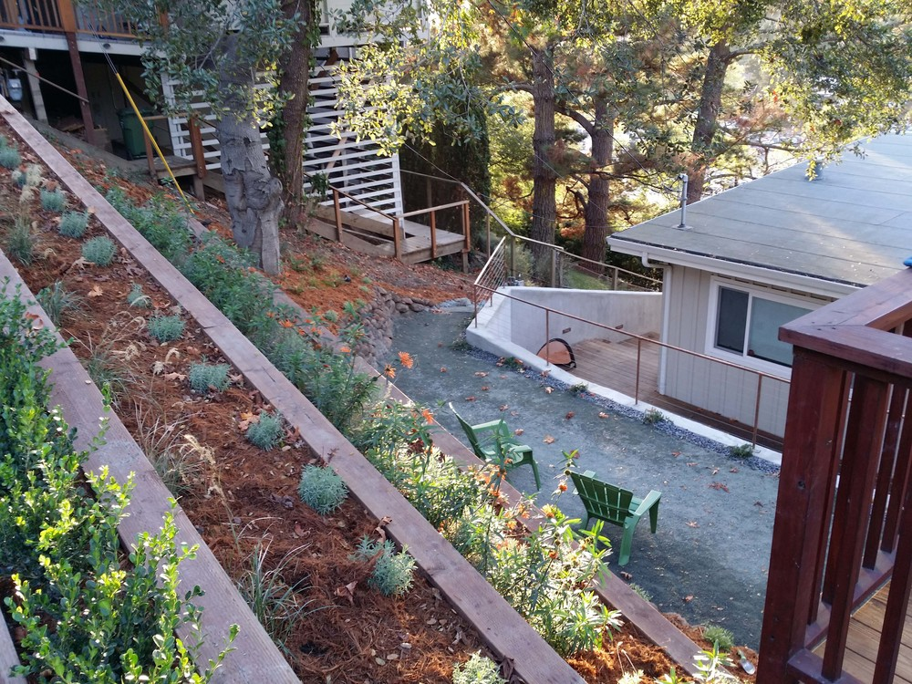 Mill Valley Landscape Designer