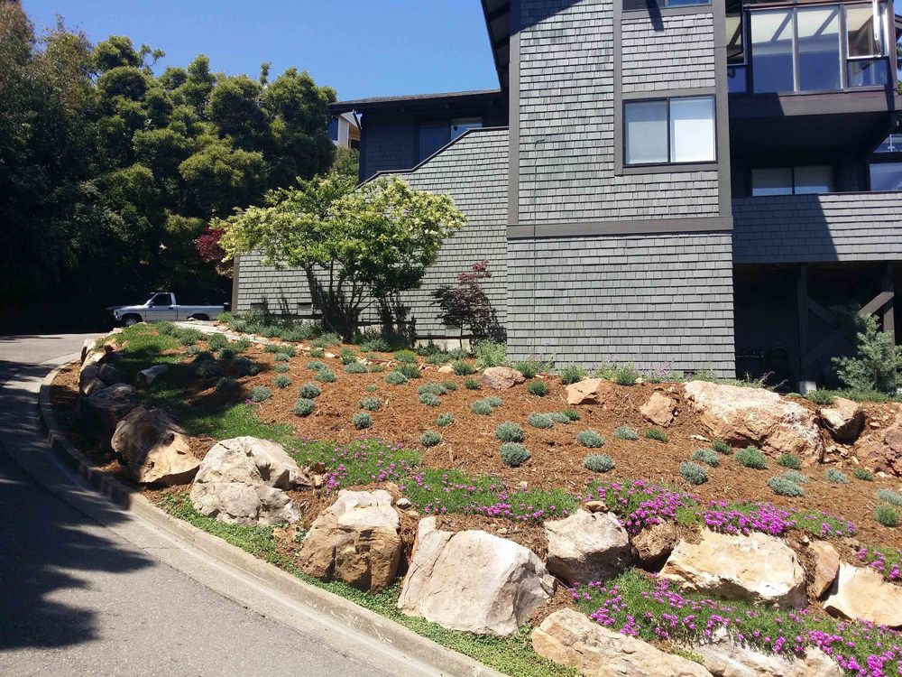Mill Valley Landscape Architect 105