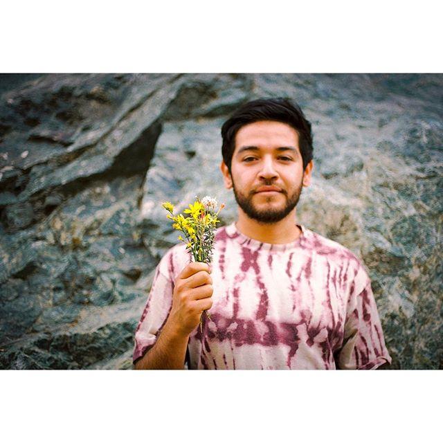 my lil #natureboy 🌱 #35mm #staybrokeshootfilm #wildflowers