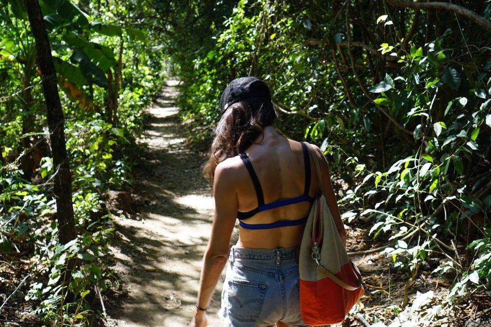 trails2.jpg
