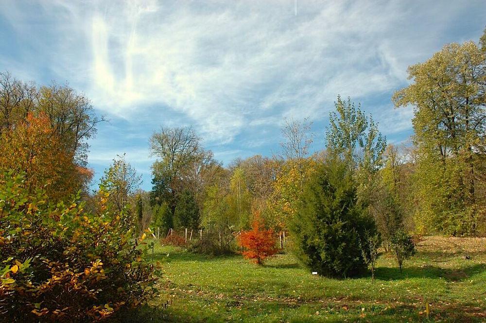 Alba Iulia Dendrological Park