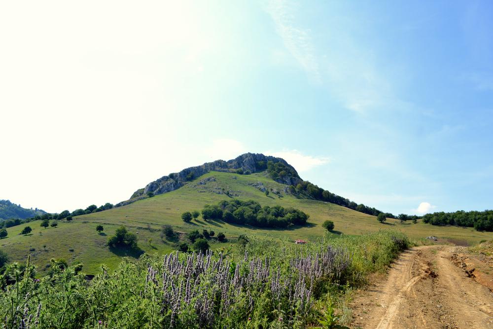Piatra Craivii mountain