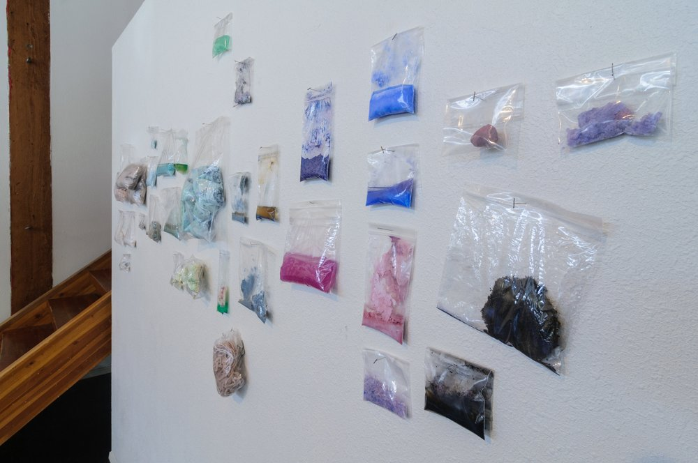 Specimen Wall  Ziplock bags, photographs, liquids and found objects.