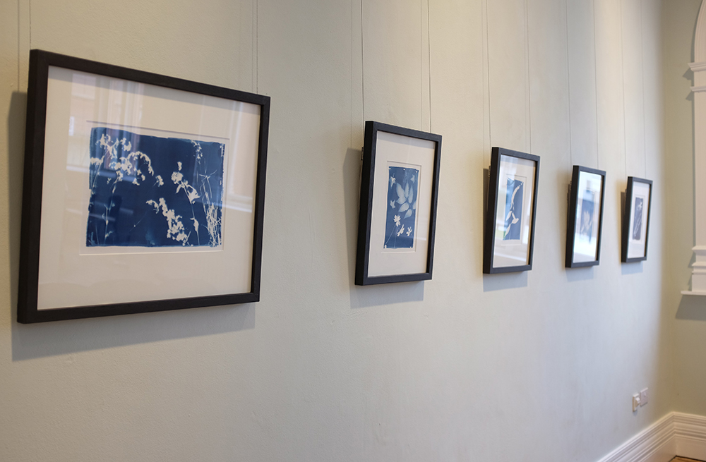 Cyanotypes form part of the exhibition