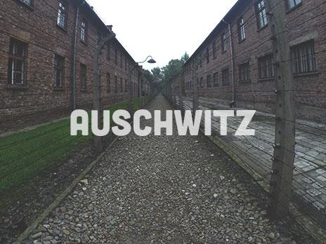 botao_auschwitz.jpg