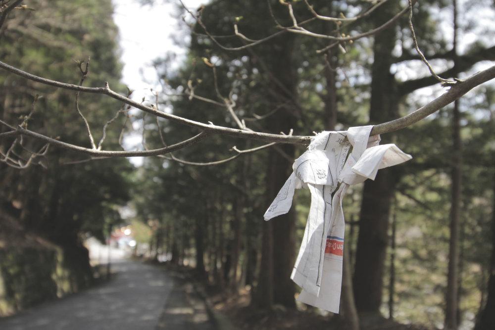 Bilhete da sorte que, ás vezes, amarram em galhos de árvores.