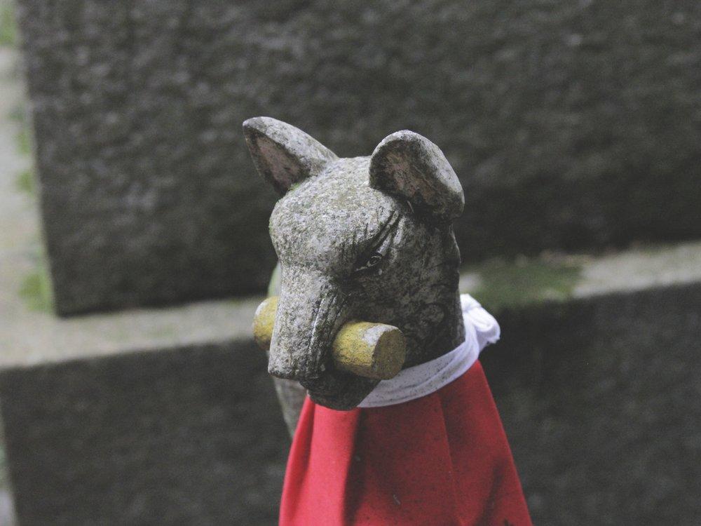 Uma das dezenas raposas encontradas ao longo do caminho. A raposa é considerada a mensageira de Inari, o deus da colheita do arroz e prosperidade nos negócios.