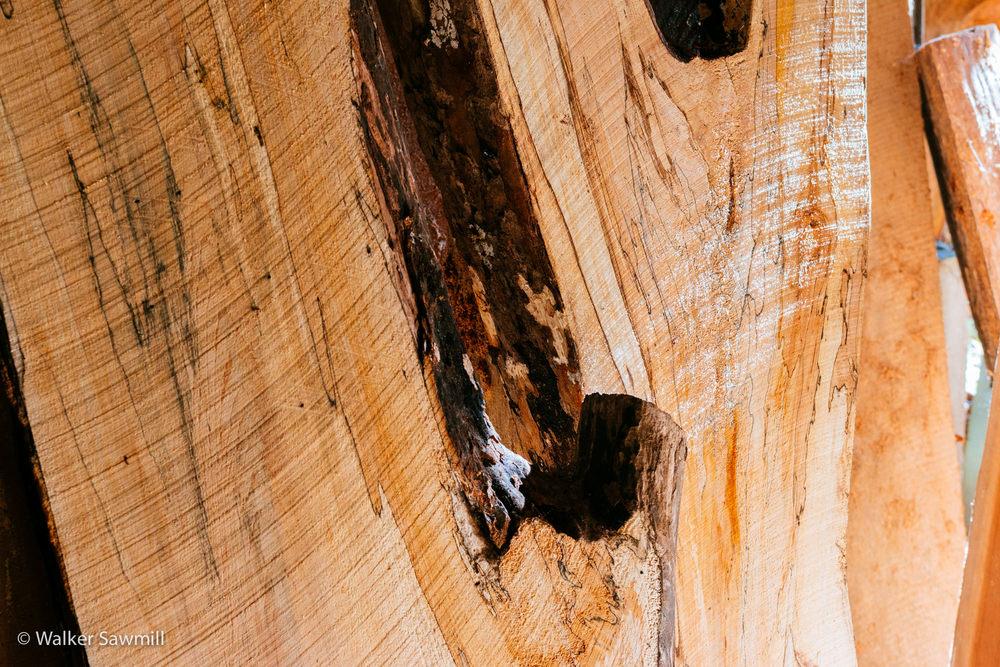 Wood John Walker Sawmill-218.jpg