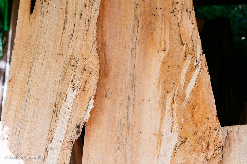 Wood John Walker Sawmill-223.jpg