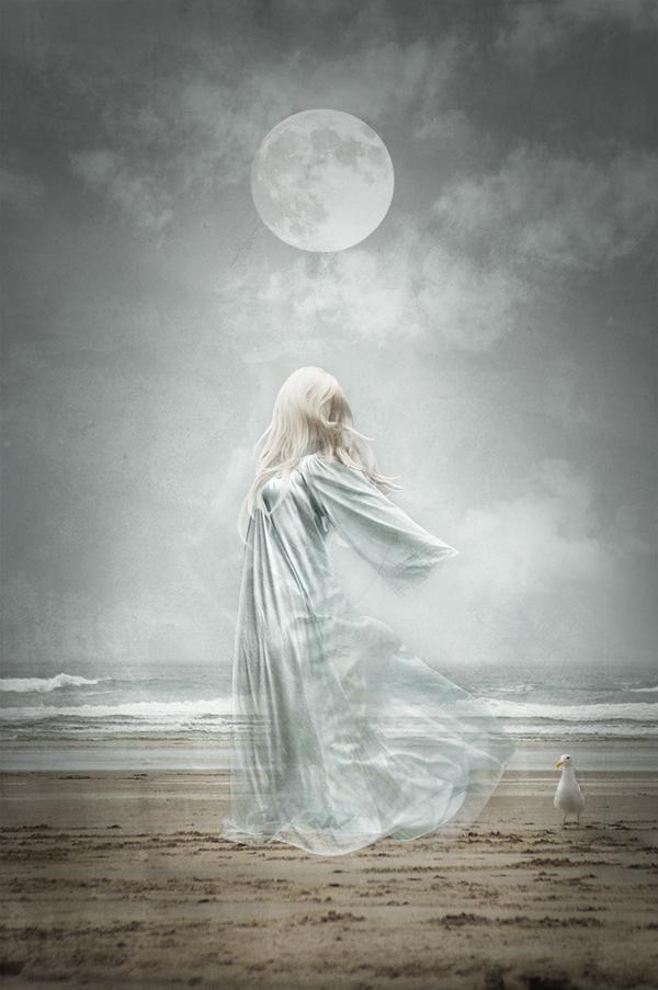 Sea Spirit 3