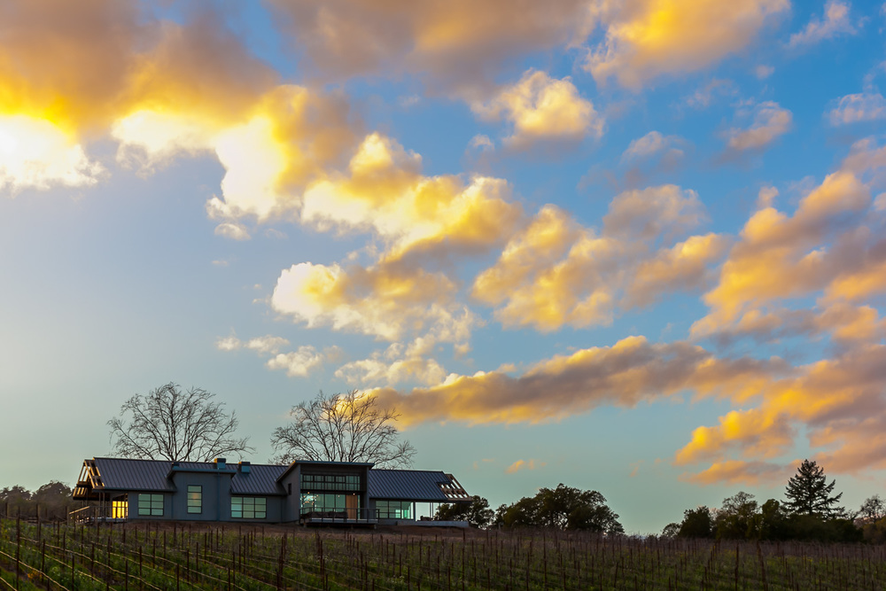 MacRostie Winery's new estate house tasting room is surrounded by spectacular views of the vineyard.