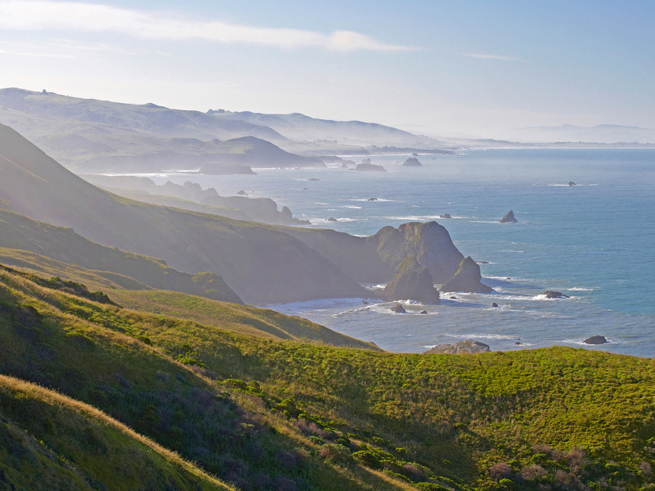 Bodega Head via Conde Nast Traveler  http://www.cntraveler.com/stories/2015-04-13/the-three-beaches-you-must-visit-in-sonoma-county-california