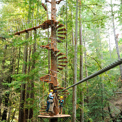 Zip lining in Occidental with Sonoma Canopy Tours via Sunset Magazine  http://www.sunset.com/travel/wine-country/napa-and-sonoma-face-off/napa-and-sonoma-face-off_8