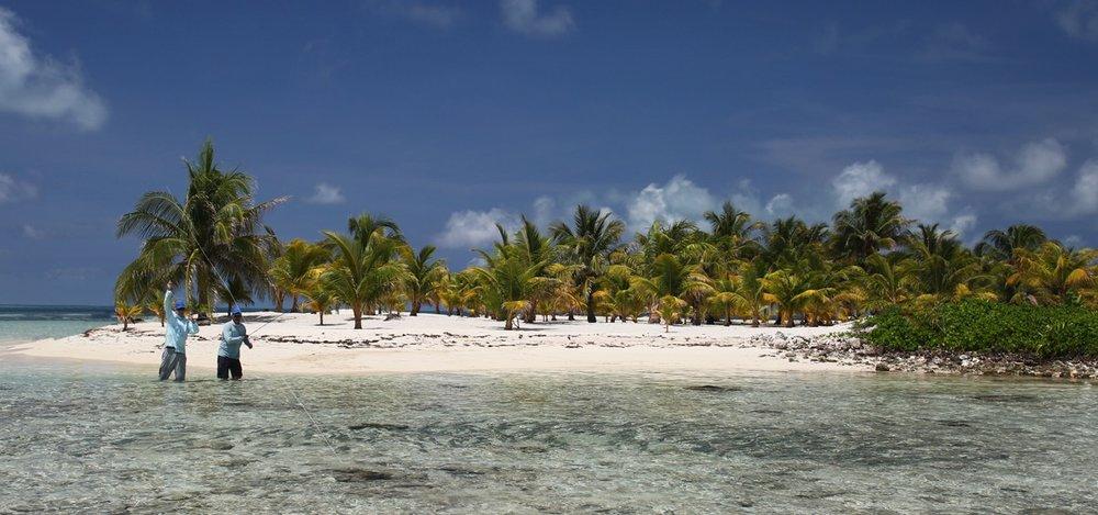 T Cay GR 7a 72 1200.jpg