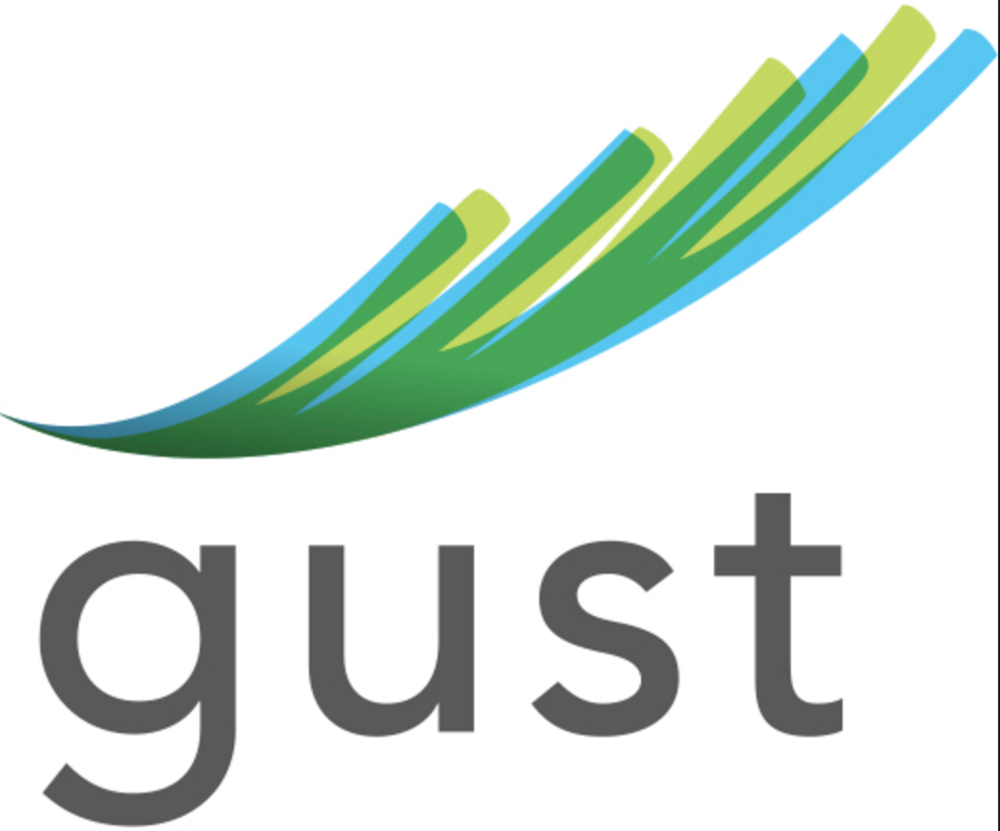#3 ranked top crowdfunding platforms: Gust.