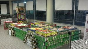 2011 Building Blocks for Hunger