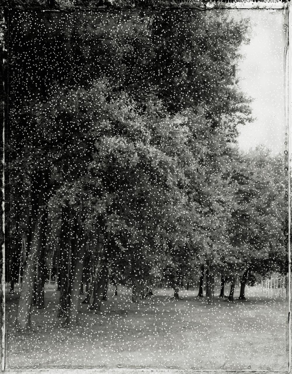 Panopticon15.jpg