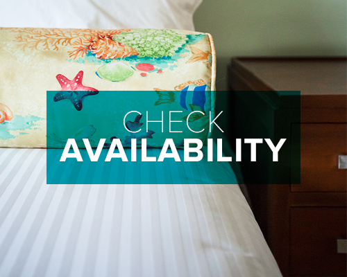 southflorida-hotel-availability.jpg