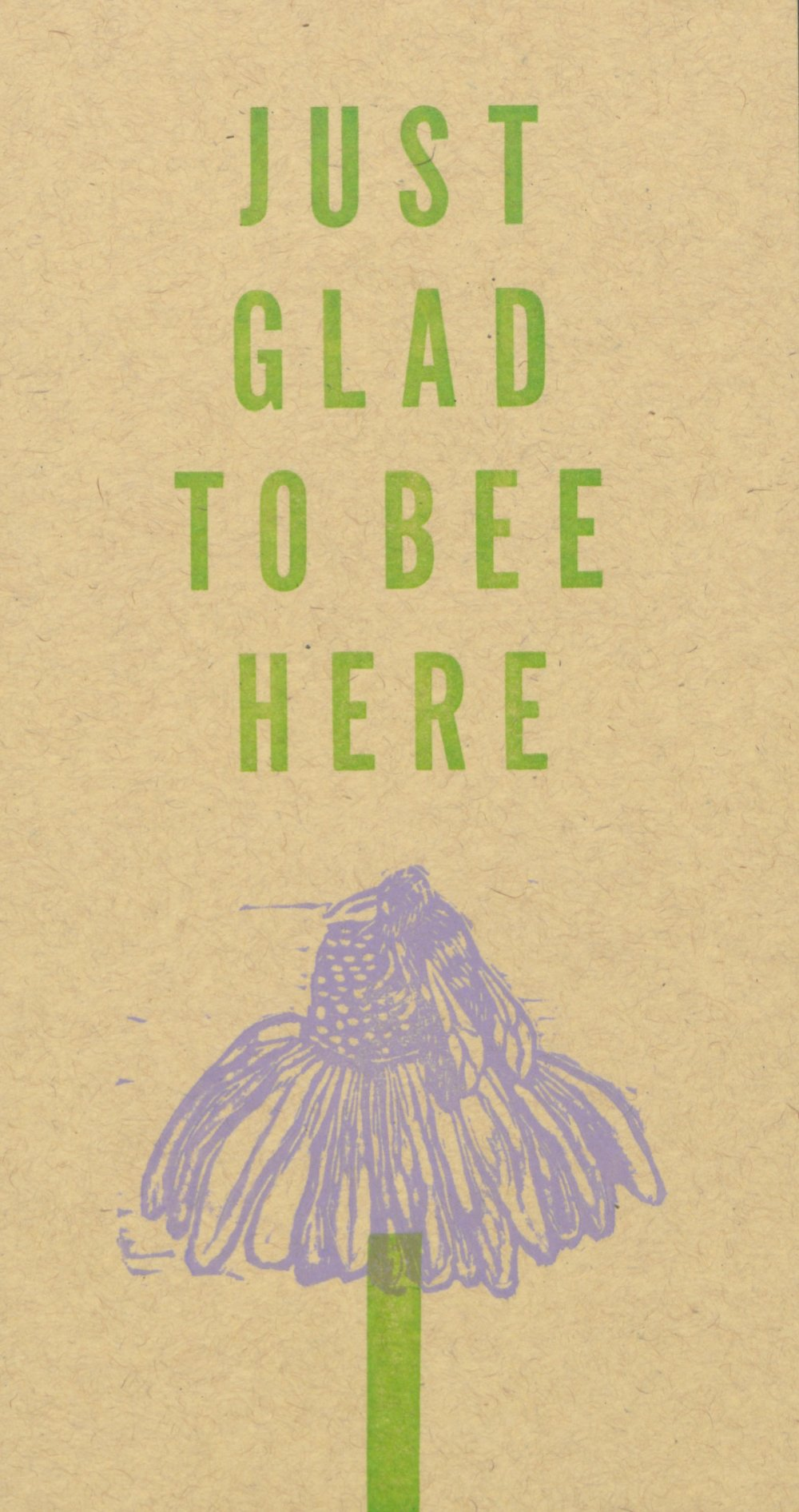 Glad to Bee Here