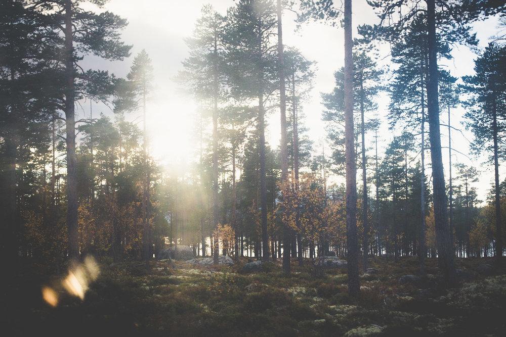 Arctic-circle-Kasper-Nybo-02.jpg