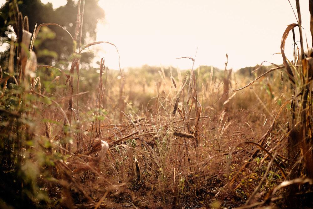 06_Malawi-drought-Kasper-Nybo.jpg