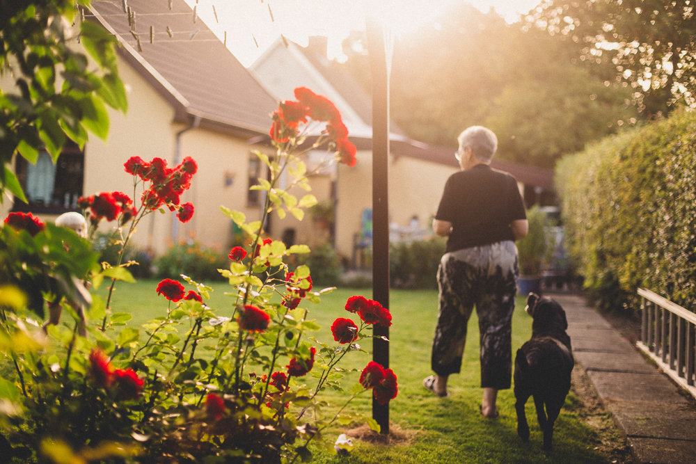 Sigrid, Mikael's wife, and their dog Ida walking in the garden on a beautiful summer evening a month after Mikael's death. She still finds herself asking Mikael what he would like for lunch or dinner, until she checks the couch, realising it is empty and Mikael is gone.