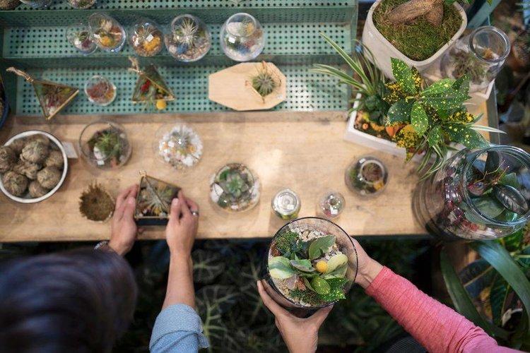 Garden Party Terrarium Making Youga Yoga