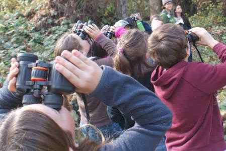 During a Kids and Creeks field trip, Emma Wilson students use binoculars to bird watch at Sycamore restoration area in Bidwell Park. (Submitted photos)