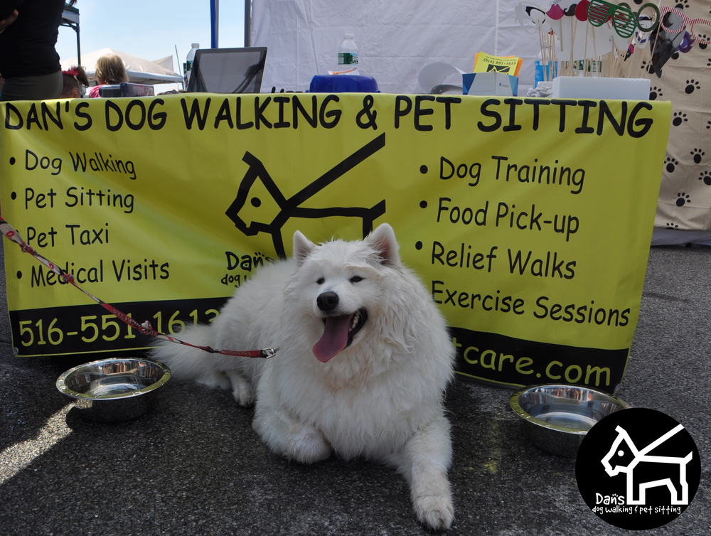 Buckeye cooling off at the Dan's Dog Walking and Pet Sitting Booth at Harbor Fest 2015.jpg