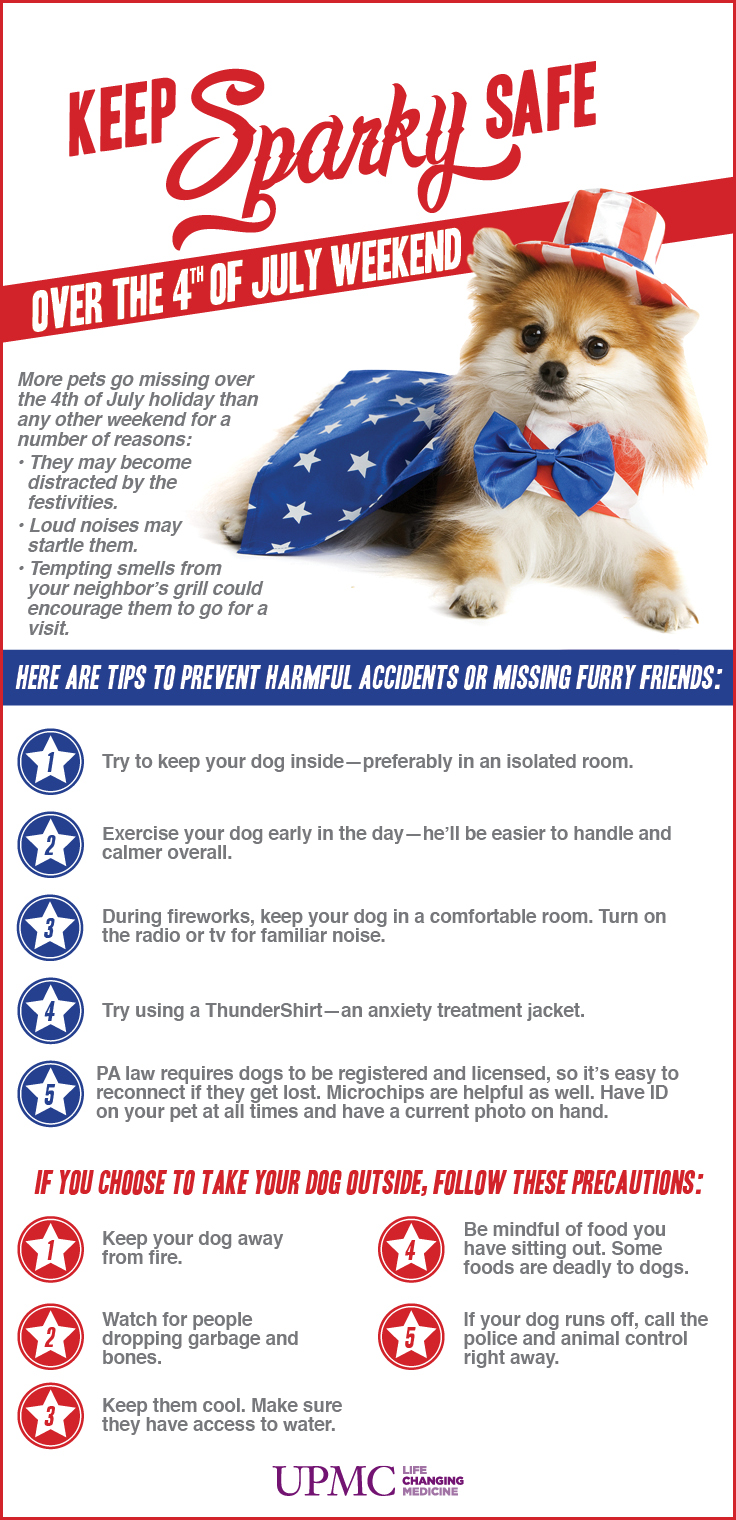 Need Us To Take Care Of Your Dogs For The 4th July