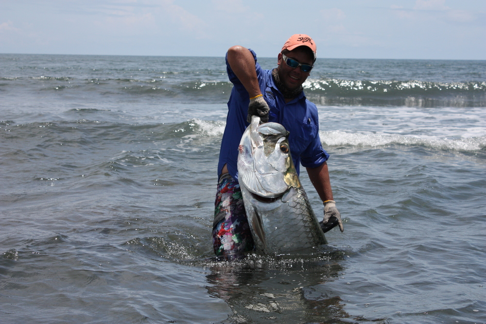 Carlos with big tarpon in surfu.jpg