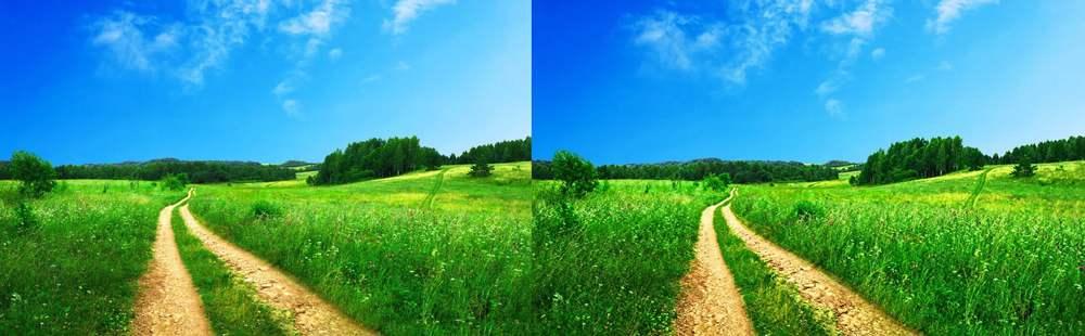 grassy path hi def 100 side by side.JPG