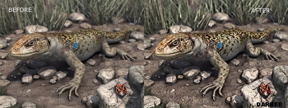 Lizard_DVn_C.jpg