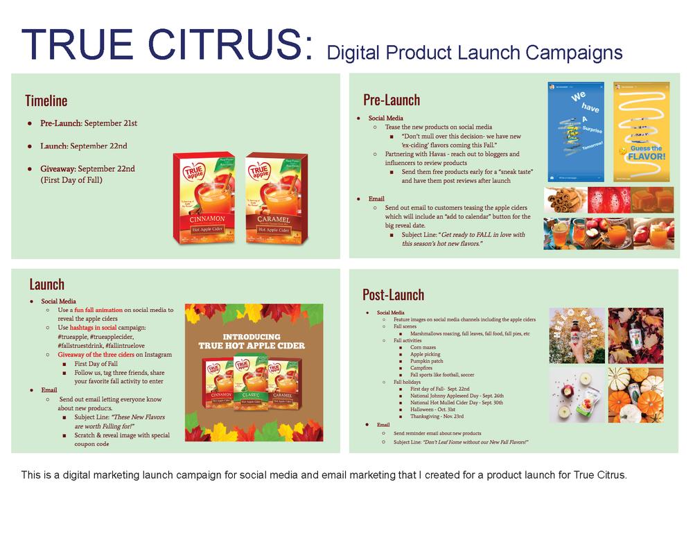 Crim Marketing Portfolio_Page_5.png