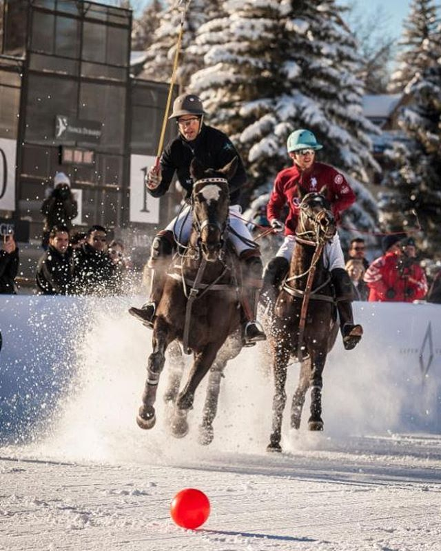 Four days until #snowpolo17! Let us know if you'll be joining us in #aspen or watching online at ChukkerTV.com #worldsnowpolo #stregis #livexquisitely
