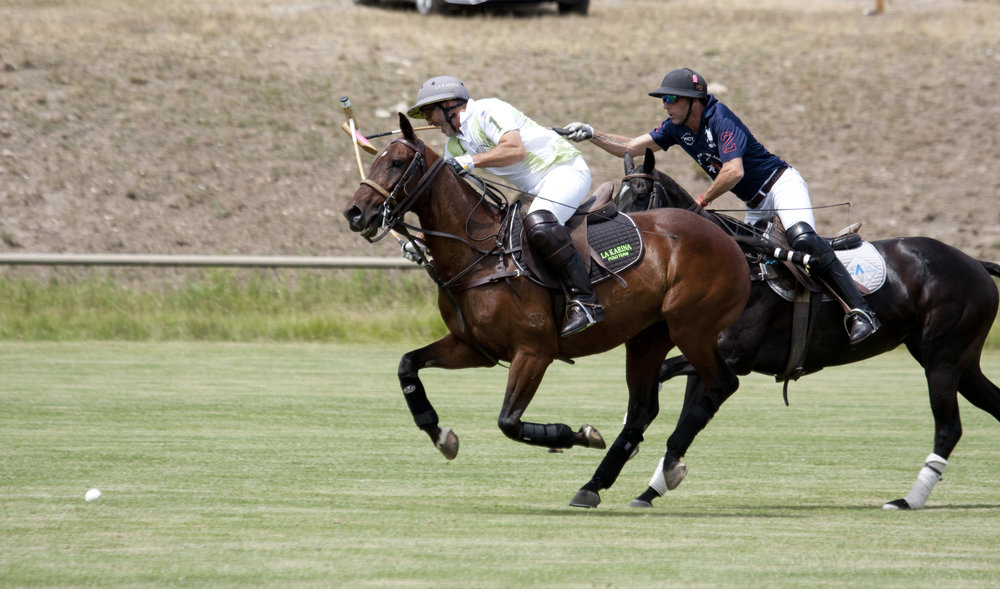 Pablo Dorignac of American Polo Horse hooks Bria.JPG