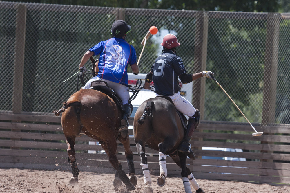 Nic Roldan of The Polo School works the ba.JPG
