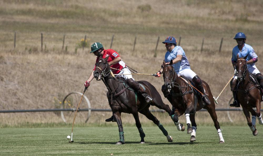Eloy Vallinna of Aspen Valley Polo Club pressures Al.JPG