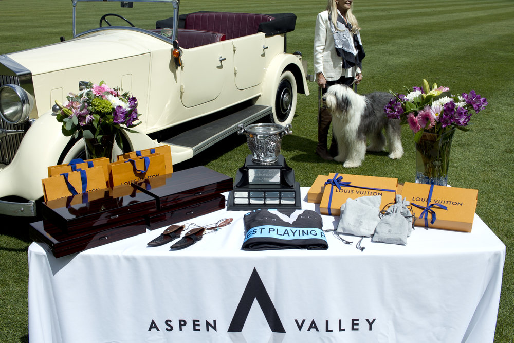 Awards table for Carbondale Classic and vint.JPG