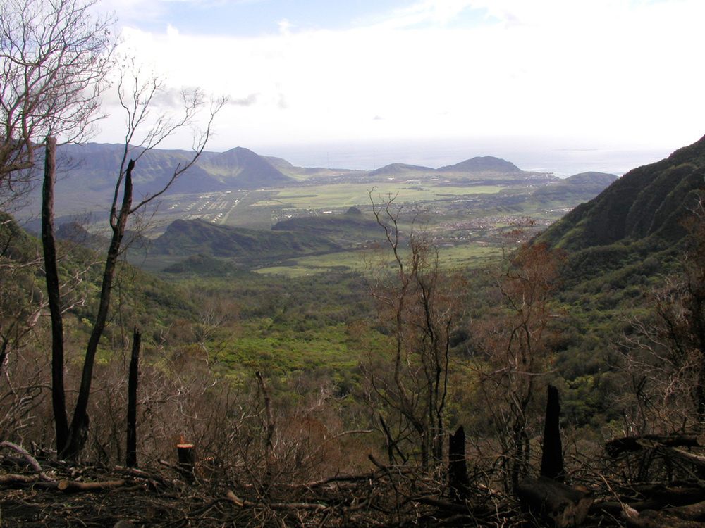 View of Waianae Kai from the Kumaipo ridge burn site in 2004