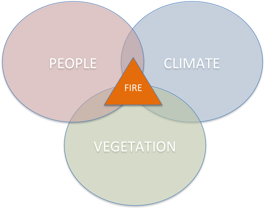 people veg climate fire triangle.png