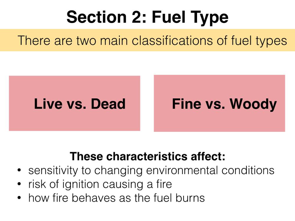 FuelsTMSlides.007.jpeg