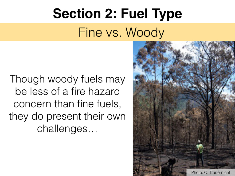 FuelsTMSlides.013.jpeg