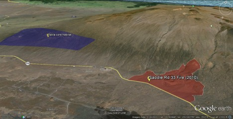 The Palila core habitat appears as the blue-purple polygon. The Mauna Kea 33 Fire burn area is indicated in reddish-orange.