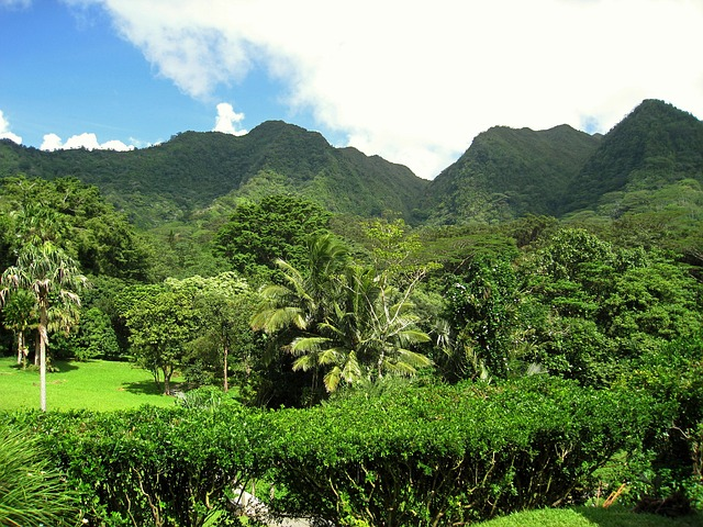 hawaii-69573_640.jpg