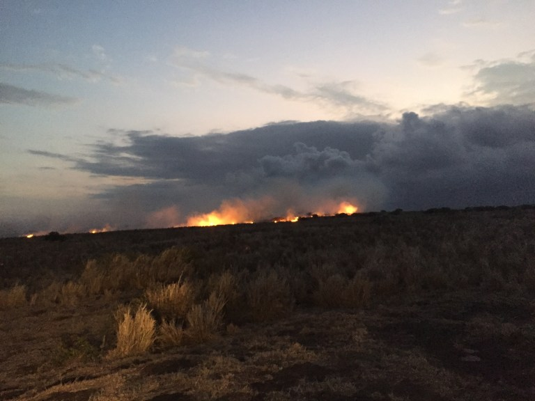 This is a photo from the first night, when the fire had burned all day and eaten up about 200 acres. Photo: Michelle Galimba