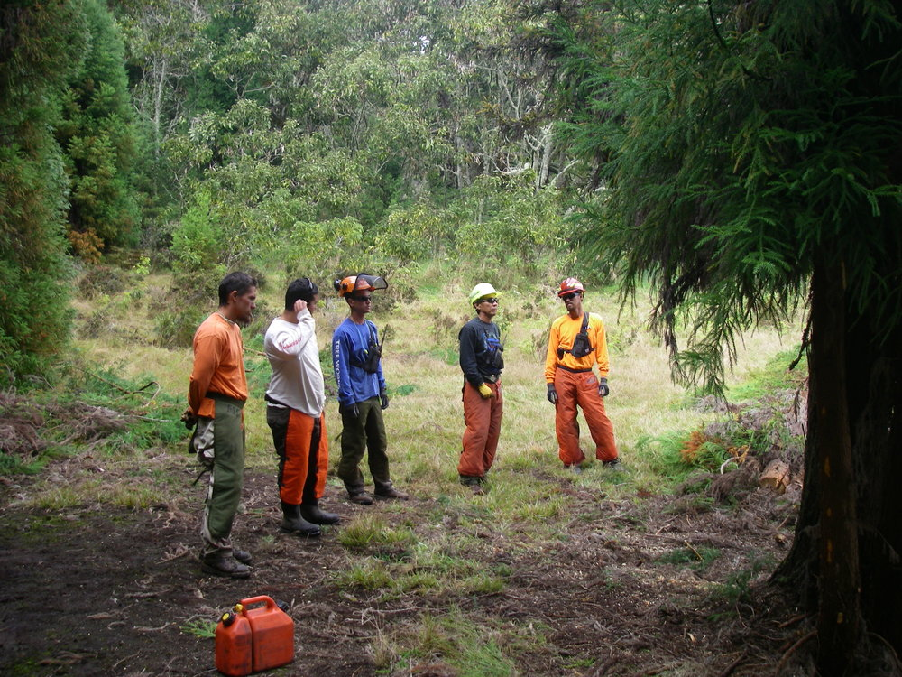 Andy, second from right, teaching S212 Chainsaw. Photo: Andy Kikuta.