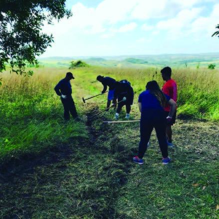 Guam high school students maintain a firebreak. Photo: Guam Forestry